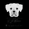 doggy daily logo